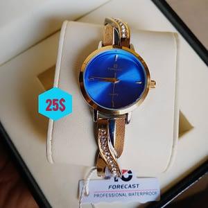 Forecast Bleu | 25$